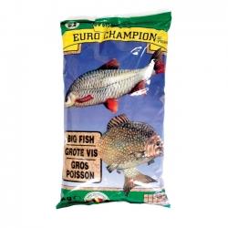 BIG FISH Euro Champion